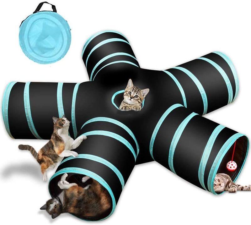 Ein Tunnel ist ein perfektes Spielzeug für die Norwegische Waldkatze